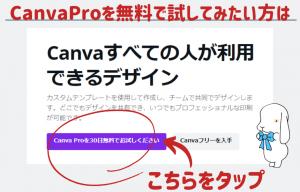 CanvaProを無料で試す